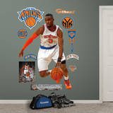 Tim Hardaway, Jr. Wall Decal