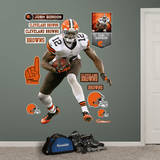 Josh Gordon Wall Decal