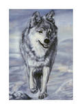 Lord of the Winterland Giclee Print by Jenny Newland
