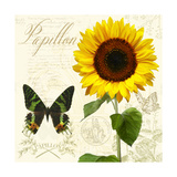 Natural History Sketchbook III Giclee Print by Tina Lavoie