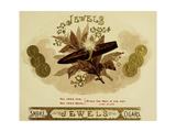 Jewels Giclee Print
