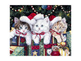 Meowy Christmas Giclee Print by Jenny Newland