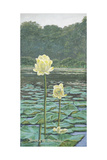 Lily Giclee Print by Bruce Dumas