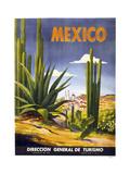 Mexico Cactus Giclée-tryk