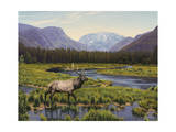 Meadows of Grand Lake, Colorado Giclee Print by John Zaccheo