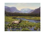 Meadows of Grand Lake, Colorado Lámina giclée por John Zaccheo