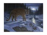Night Stalker Giclee Print by Bruce Dumas