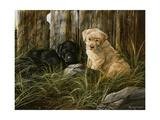 Lab Pup Pair Reproduction procédé giclée par Trevor V. Swanson