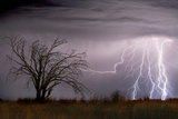 Lightning Photographic Print by Wayne Bradbury