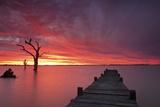 Lake Charm 4 Fotodruck von Wayne Bradbury