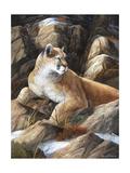 Last Warm Rays Giclee Print by Trevor V. Swanson