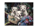 Lovable Westies Giclee Print by Jenny Newland