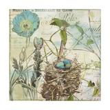 Nesting I Giclee Print