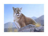 Mountain King Giclee Print by Rusty Frentner