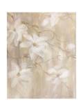 Magnolias II Giclee Print by li bo