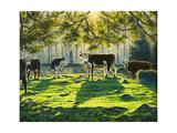 Lucky Bull Giclee Print by Bruce Dumas