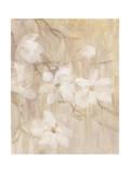Magnolias I Giclee Print by li bo