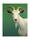 Portrait of a Goat Giclee Print by James W. Johnson