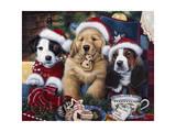 Sawry Santa Paws Giclee Print by Jenny Newland