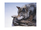 On the Edge Giclee Print by Rusty Frentner