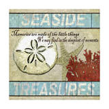 Seaside Treasures Giclee Print by Karen Williams