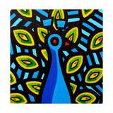 Peacock 1 Giclee Print by John Nolan