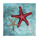 Sea Shore Giclee Print by Megan Aroon Duncanson