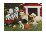 Puppy Playmates Giclee Print by William Vanderdasson