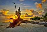 Sanibel Sunrise Photographic Print by Dennis Goodman