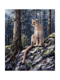 King of the Forest Giclee Print by Jeff Tift