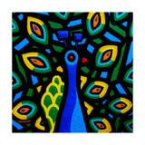 Peacock 2 Giclee Print by John Nolan