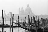 Santa Maria Della Salute, Venezia, Italia Photographic Print by Jeff Pica
