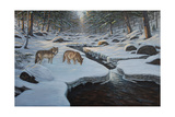 Rocky River Wolves Giclee Print by Bruce Dumas