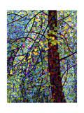 Pine Sprites Giclée-tryk af Mandy Budan