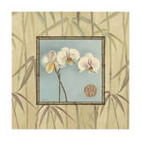 Orchid Spa 3 Giclee Print by Lisa Audit