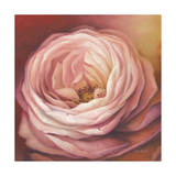Rose Giclee Print by Lisa Audit