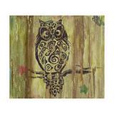 Owl Giclee Print by Karen Williams