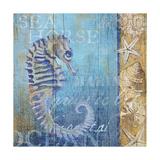 Sea Horse and Sea Giclee Print