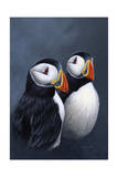 Puffins Giclee Print by Jeremy Paul