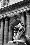 NY Public Library III Fotodruck von Jeff Pica