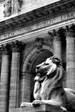 NY Public Library III Photographic Print by Jeff Pica