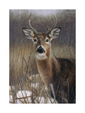 On Guard Giclee Print by Rusty Frentner