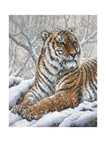 Power and Grace Giclee Print by Jeff Tift