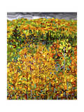 Towards Autumn Giclee Print by Mandy Budan