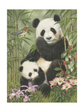 Panda Paradise Lámina giclée por William Vanderdasson
