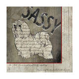 Shih Tzu II Giclee Print by Karen Williams