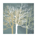Tranquil Trees Giclee Print by Erin Clark
