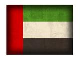 United Arab Emirates Giclee Print by David Bowman