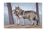 Two Wolves Giclee Print by Rusty Frentner