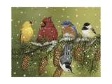 Snowy Feathered Friends Giclee Print by William Vanderdasson